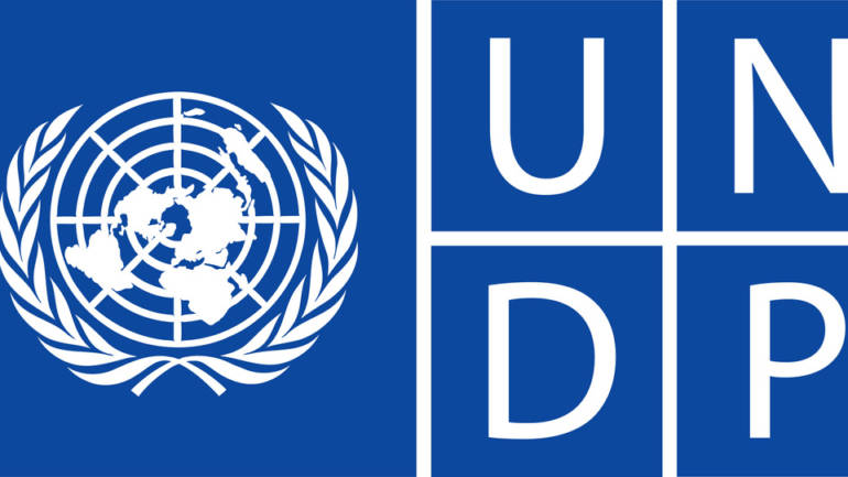UNDP Zimbabwe (2012 and 2013)