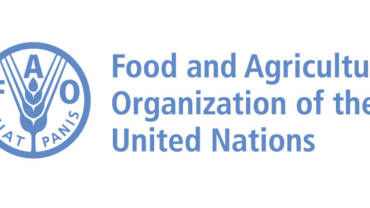 FAO Africa Region and Southern Africa Region (2015 and 2016)